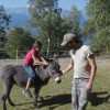 L'agricoltura sociale: un percorso di sviluppo rurale e un peculiare modello di welfare locale