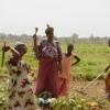 Il pensiero della Chiesa sull'impresa agricola