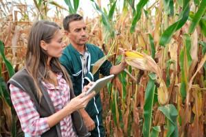 giovani-giovane-agricoltori-by-goodluz-fotolia-750