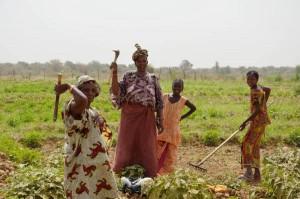 ANSA/ Giornata Africa: in Senegal donne contro fame e povertà